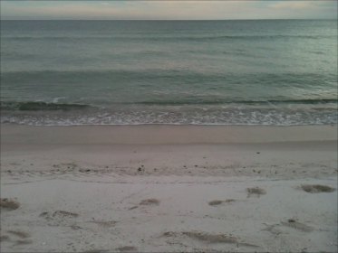 beach at gulf shores alabama