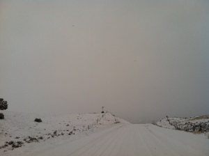 Light Plant Road 14 December 2012